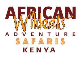 Wildcat Safaris