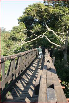 The Kasuku Birdwatching Luxury Safari